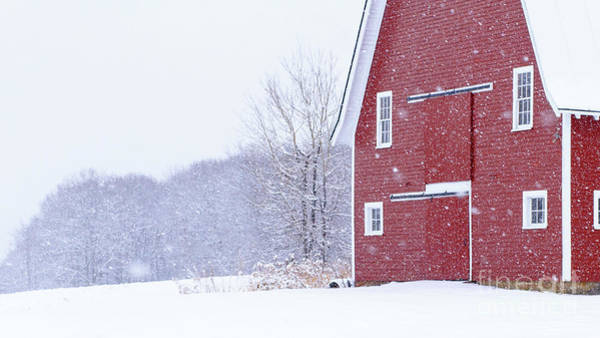 Wall Art - Photograph - New England Snowstorm Red Barn by Edward Fielding
