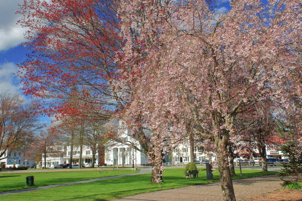 Wall Art - Photograph - New England Town Common In Spring by John Burk