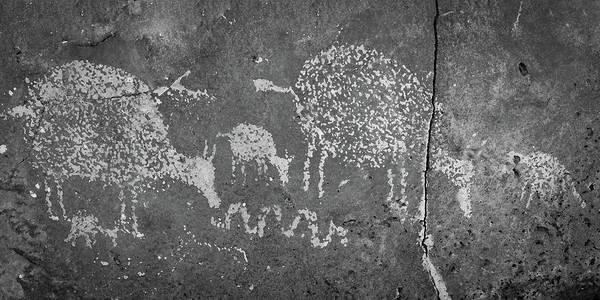 Photograph - New Mexico Petroglyph by Jeff Phillippi