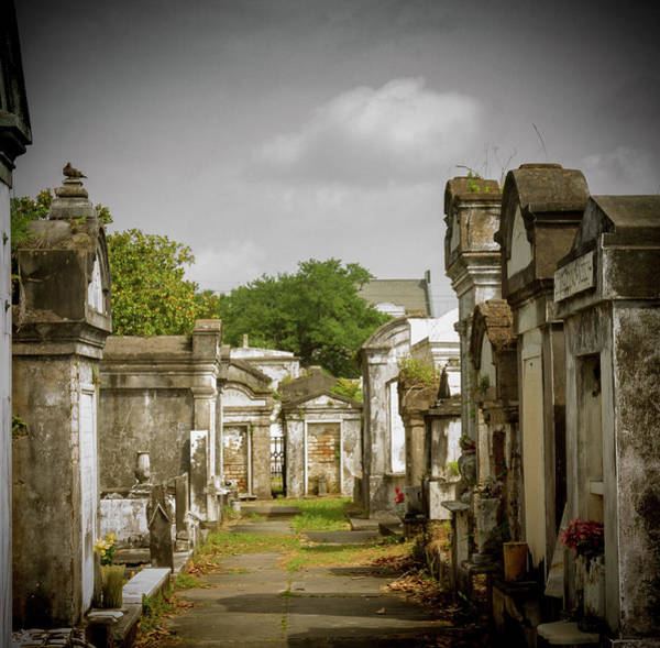 Photograph - New Orleans Cemetery by Jean Noren