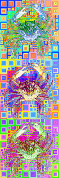 Photograph - New Orleans Louisiana Bayou Blue Crab In Abstract Squares 20190203 Long Vertical by Wingsdomain Art and Photography