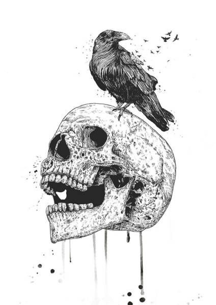 Wall Art - Drawing - New Skull by Balazs Solti
