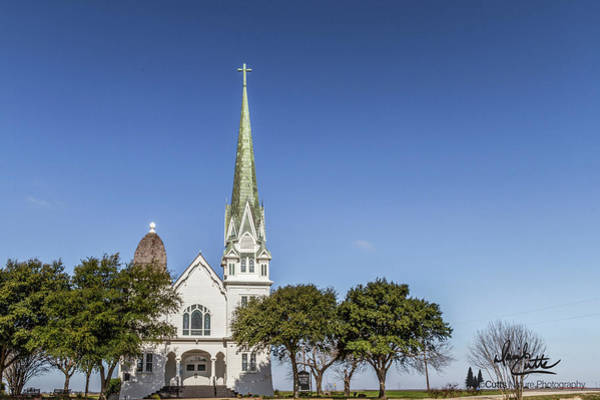 Photograph - New Sweden Evangelical Lutheran Church by David Cutts