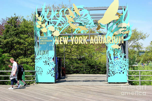 Wall Art - Photograph - New York Aquarium Entrance, Coney Island, Brooklyn, New York by Zal Latzkovich