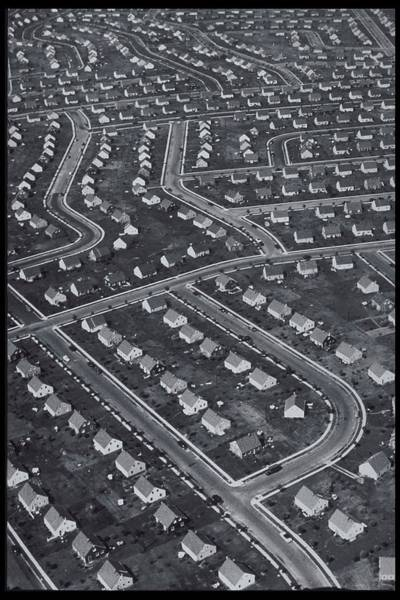 Housing Development Photograph - New York, Levittown, Aerial 1951 B&w by Archive Holdings Inc.