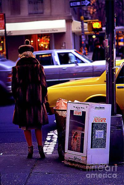 Photograph - New York Mink by Tom Jelen