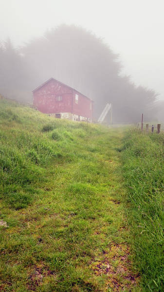 Photograph - New Zealand Sheep Shed In The Fog by Joan Carroll