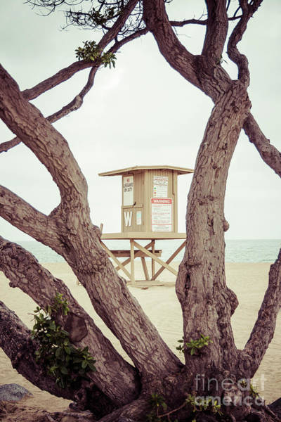 Wall Art - Photograph - Newport Wedge Lifeguard Tower W Through Trees by Paul Velgos
