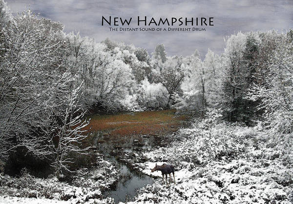 Photograph - Nh Different Drum Poster by Wayne King