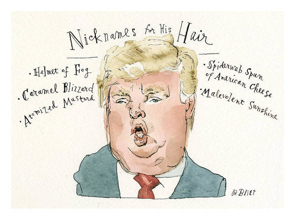 Painting - Nicknames For His Hair by Barry Blitt