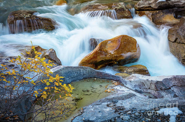 Wall Art - Photograph - Nigel Creek Cascades by Inge Johnsson
