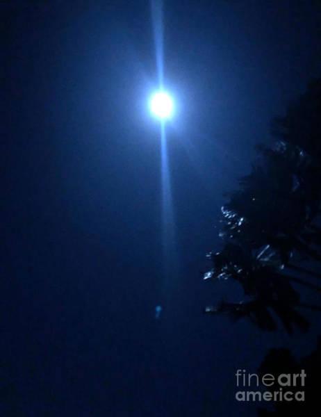 Photograph - Night Before Super Moon by Karen Nicholson