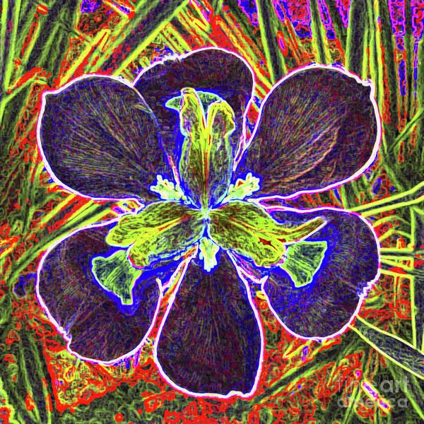 Wall Art - Photograph - Night Blooming Flower by Jerome Stumphauzer