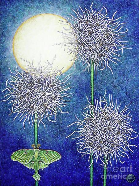 Night Garden 2 Art Print