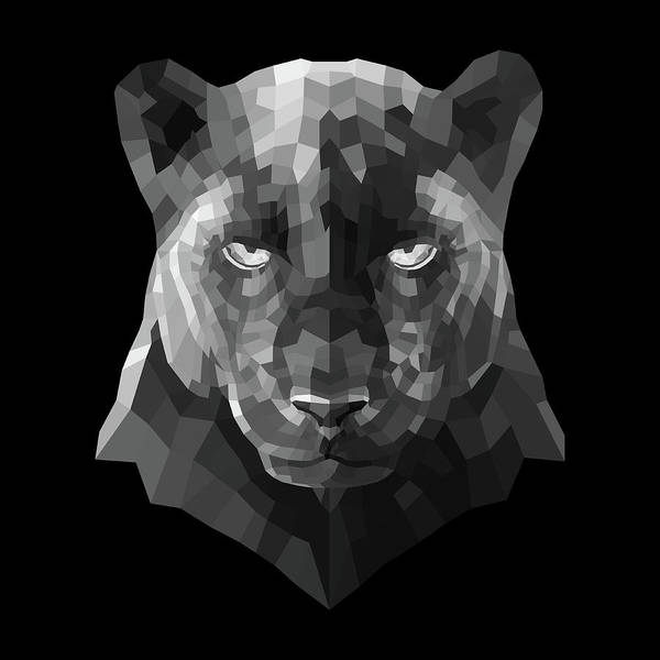 Bobcat Wall Art - Digital Art - Night Panther by Naxart Studio