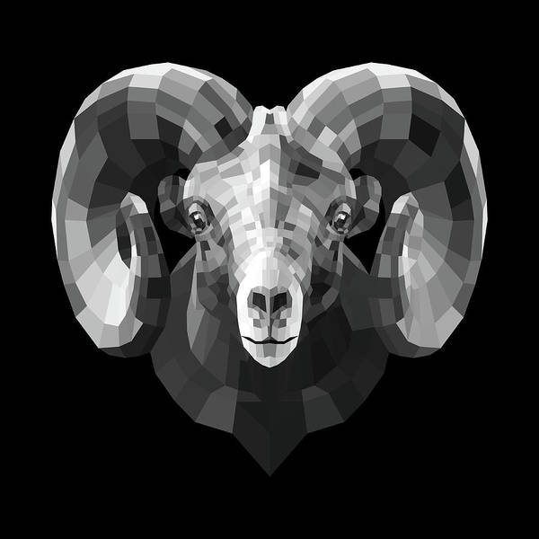 Wall Art - Digital Art - Night Ram by Naxart Studio