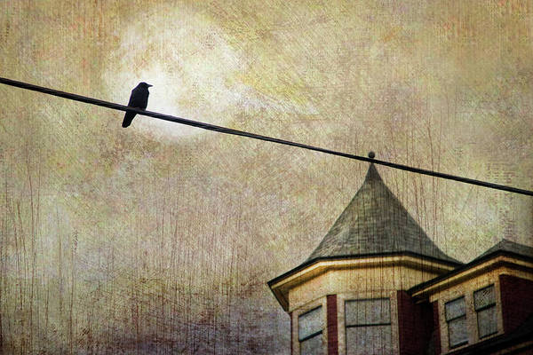 Grit Wall Art - Photograph - Nightfall And A Crow by Theresa Tahara