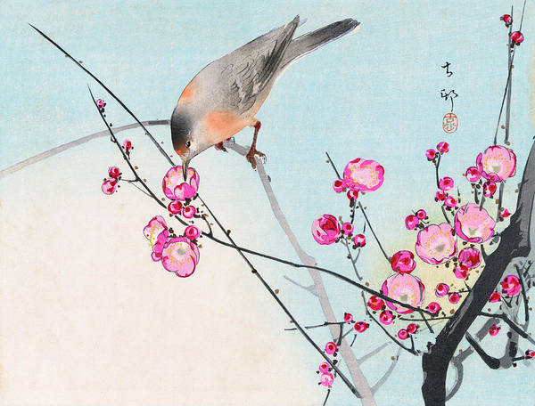 Painting - Nightingale by Koson