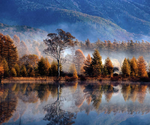 Nikko Photograph - Nikko National Park Of The Morning Fog by All Rights Reserved