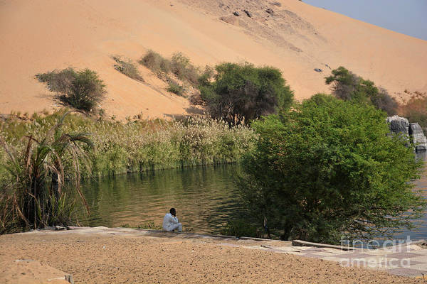 Wall Art - Photograph - Nile Watch by Andrea Simon