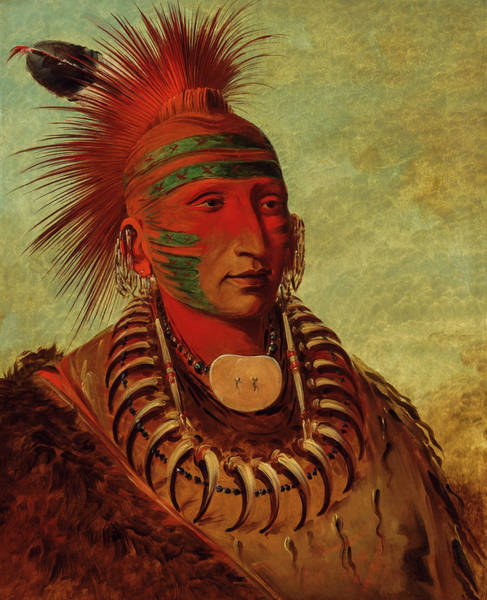 Wall Art - Painting - No-ho-mun-ya, One Who Gives No Attention by George Catlin
