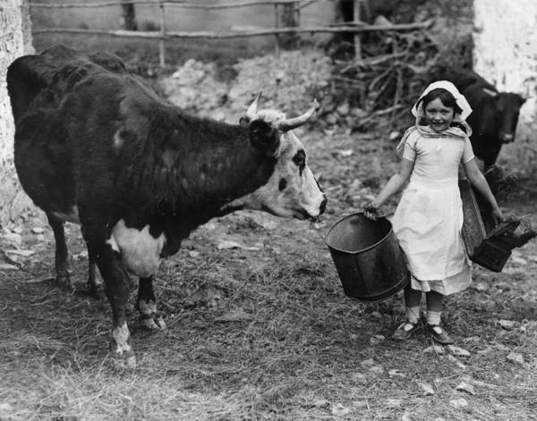 Apron Photograph - No Milk by Reg Speller