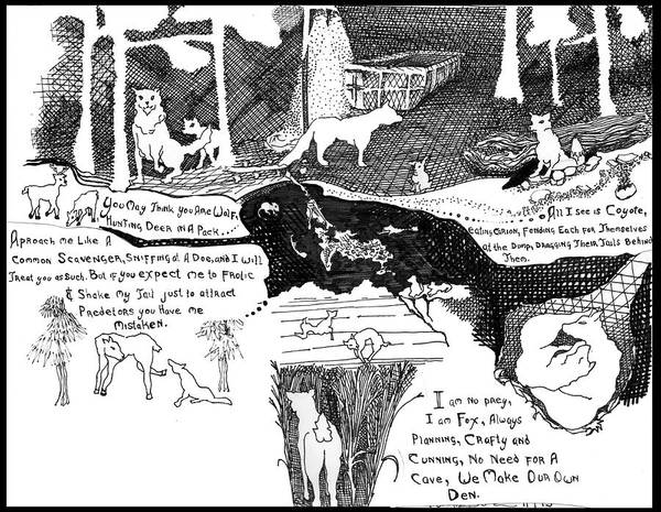 Animal Drawing - No Prey by Alice Ann Barnes