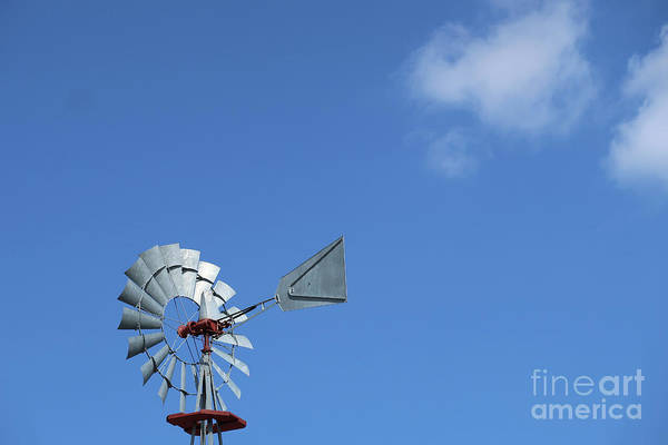 Photograph - No Wind Blowing by Ann Horn