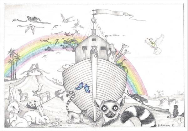 Olive Branch Drawing - Noah's Ark - A Whimsical Pencil Illustration by Lisa Mary Narramore