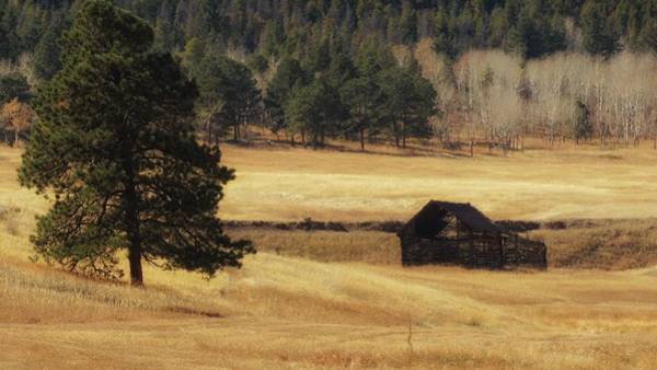 Photograph - Noble Meadow Barn by Lukas Miller