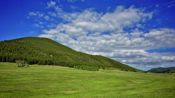 Photograph - Noble Meadow Spring by Dan Miller