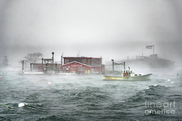 Wall Art - Photograph - Nor'easter At Cook's Lobster by Benjamin Williamson