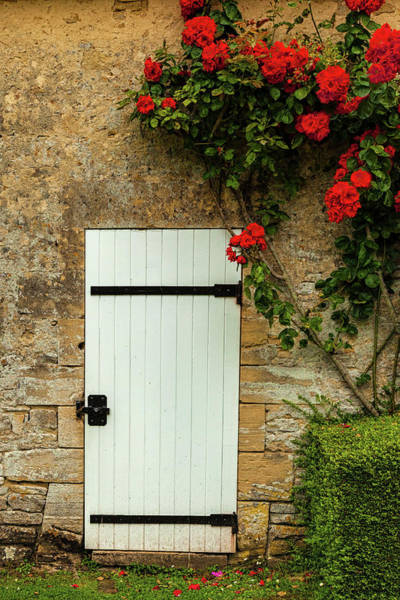 Wall Art - Photograph - Normandy Door by Andrew Soundarajan