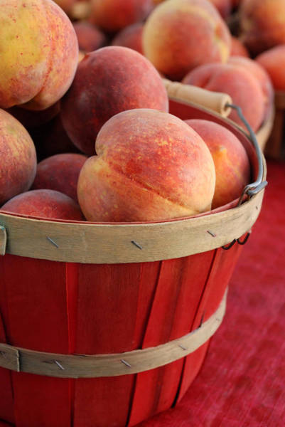 Wall Art - Photograph - North Carolina Peaches In Red Basket by Dianne Sherrill