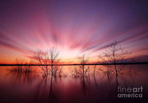 Wall Art - Photograph - North Carolina Sunset by Matthew Junker