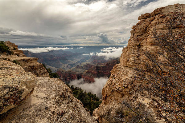 Wall Art - Photograph - North Rim Fog 3 - Grand Canyon National Park - Arizona by Brian Harig