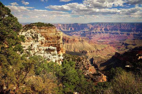 Wall Art - Photograph - North Rim Grand Canyon National Park Iv by Ricky Barnard