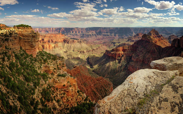 Wall Art - Photograph - North Rim Grand Canyon National Park Vi by Ricky Barnard