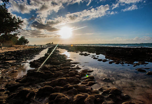 Photograph - North Shore Tide Pools by Anthony Jones