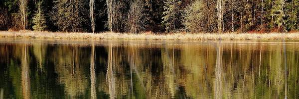 Photograph - North Valley Road Reflections by Jerry Sodorff