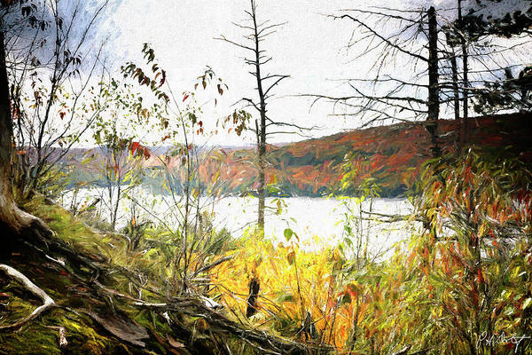 Algonquin Park Digital Art - Northern Autumn by Phill Doherty