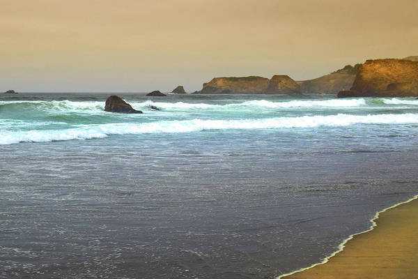 Photograph - Northern California Coast by Frank Wilson