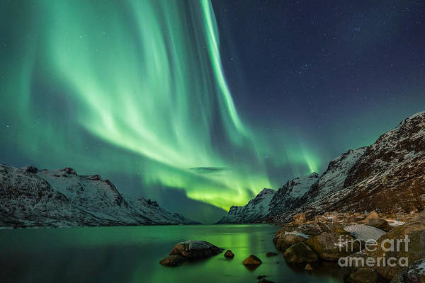 Fjord Photograph - Northern Lights Above Waters Edge by Jamen Percy