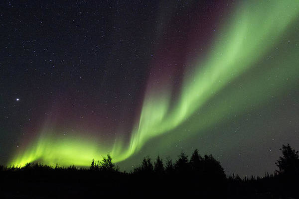 Yellowknife Wall Art - Photograph - Northern Lights by Coal Photography/alexander Legaree