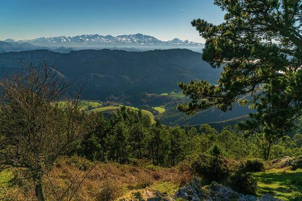 Wall Art - Photograph - Northern Spain by Ric Schafer