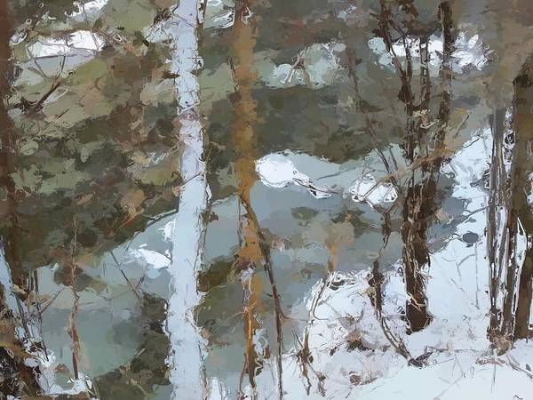 Wall Art - Photograph - Northern Winter #3 by David Boudreau