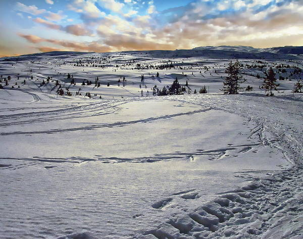 Photograph - Norway Winter Scene by Anthony Dezenzio