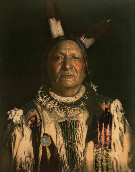 Wall Art - Painting - Not Afraid Of The Pawnee-yanktonai Sioux Chief by De Lancey Gill