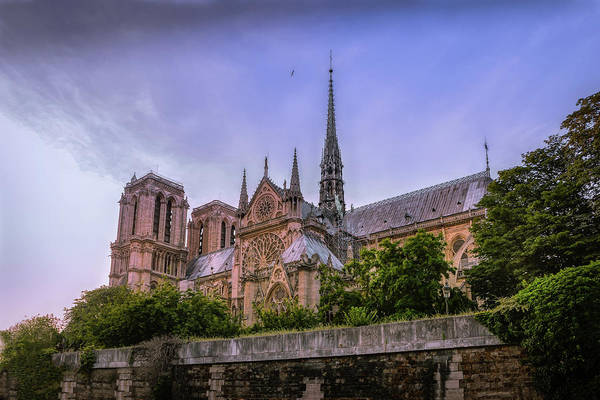 Wall Art - Photograph - Notre Dame Cathedral Paris 2 by Mary Lynn Giacomini