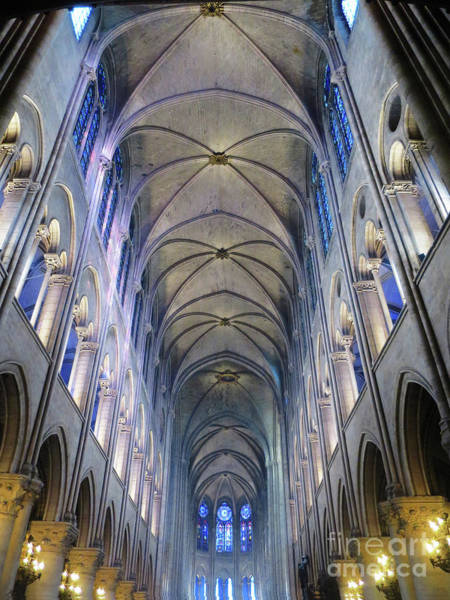 Photograph - Notre Dame De Paris - A View From The Floor by Rick Locke